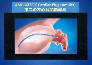 図8A Amplatzer Cardiac Plug